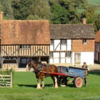 Cart horse standing outside old fashioned cottages